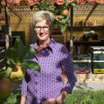 Het bijenmeubel: van ei tot bij, een bijenlezing op 26 oktober